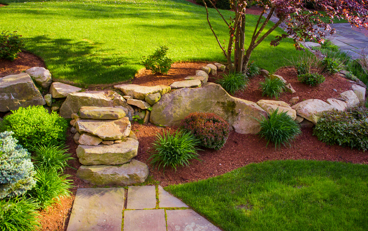 Great Budget Friendly Ideas For Your Backyard Landscape
