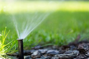 Ensure a beautiful spring landscape with an irrigation system.